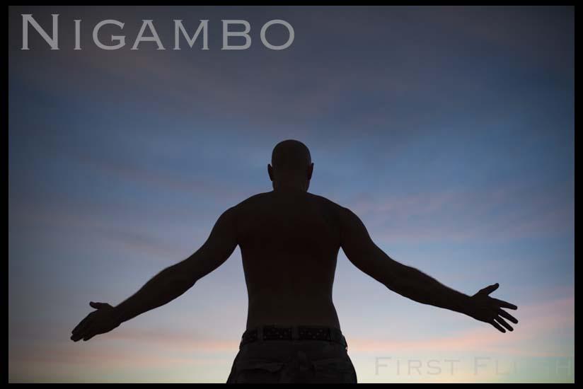 Nigambo-index