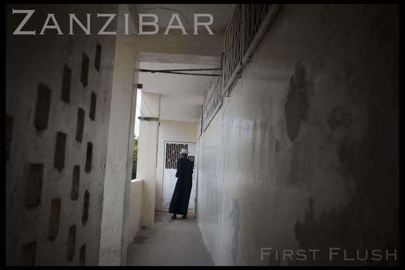 zanzibar-index